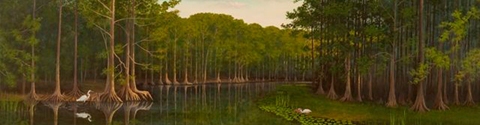 Florida & Southern Landscapes Paintings by Susan Oller